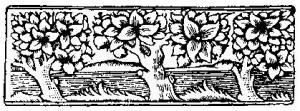 woodcut-trees