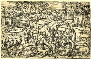 Image from a Labours of the Month c. 1580.  British Museum E,9.168