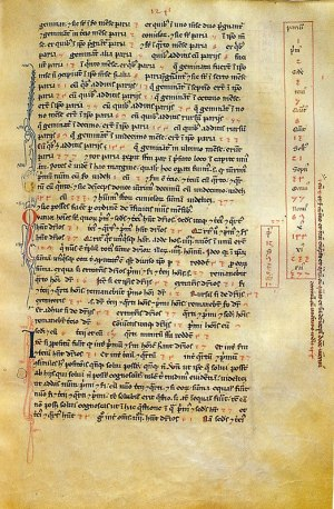 Folio 124r of the Codex magliabechiano, a manuscript of Liber Abbaci preserved in the Biblioteca Nazionale di Firenze.