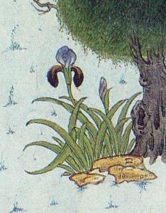 "Iris. Mosavver, Mir. Detail from the Shāh Tahmāsb Shāhnāme, ""Rostam Lassoes Rakhsh"". (1525) Soudavar, p. 166."