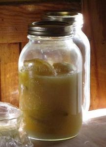 Lemons, preserving. Photo by Aildreda de Tamwurthe.
